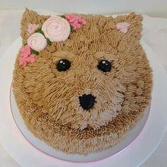 Dog Cake Cakes Yummy How To Make Birthday