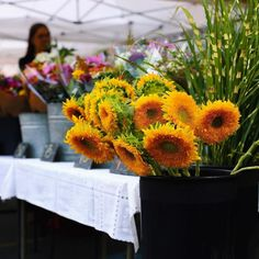 our happy place // scenes from the sunday morning farmers market #inmybowl