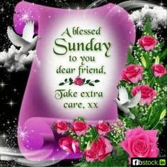 A Blessed Sunday to you dear friend...take care xxx sunday happy sunday sunday greeting sunday blessing sunday quote