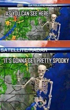 Halloween Meme, Spooky Memes, Spooky Scary, Spooky Halloween, Halloween Stuff, Happy Halloween, Halloween Skeletons, Memes Humor, New Memes