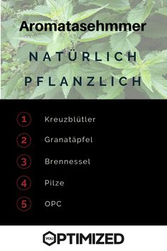Hier sind die besten natürlichen und pflanzlichen Aromatasehemmer.  #aromatasehemmer #natürlich #pflanzlich Vitamin D, Movie Posters, Sport, Muscle Pain, Breast Cancer, Pomegranate, Health And Fitness, Recipies, Deporte
