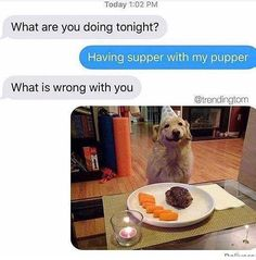 Right here are some wonderful doggo memes to assistance you get by means of the rest of the day and just a small nearer to the weekend! # pet dog memes # funny memes # animal memes # funny canine On dogs Cute Animal Memes, Cute Funny Animals, Funny Animal Pictures, Cute Baby Animals, Funny Cute, Hilarious, Cute Puppies, Cute Dogs, Cute Babies