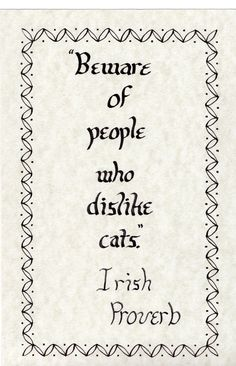 Beware Of People Who Dislike Cats. Custom Order Calligraphy Quote--Irish Proverb via Etsy