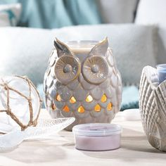 Shadow Owl w/ LED and Timer