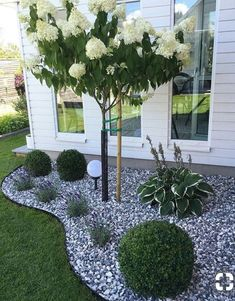 Simple, easy and cheap DIY garden landscaping ideas for front yards and backyard. - Simple, easy and cheap DIY garden landscaping ideas for front yards and backyard… – Сад – - Small Backyard Landscaping, Landscaping Design, Corner Landscaping Ideas, Landscaping With Rocks, Landscaping Front Of House, Landscaping With Gravel, Cheap Landscaping Ideas For Front Yard, Modern Landscaping, Landscaping Plants