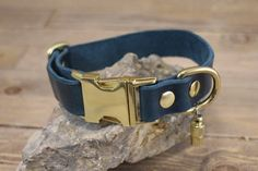 Side release collar ID address tube Custom leather collar Dog Accessories, Leather Accessories, Dachshund Puppies, Funny Puppies, Newfoundland Puppies, Leather Key Holder, Hiking Dogs, Handmade Dog Collars, Collor