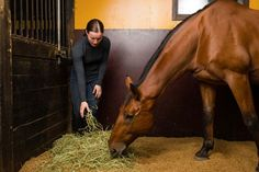 Here are a few ways to make feeding time more efficient without sacrificing your horse's dietary balance. #horses #horsehealth #TheHorse #feedinghorses #nutrition