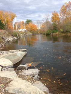 1000 images about salmon fishing pulaski ny on for Salmon river ny fishing report