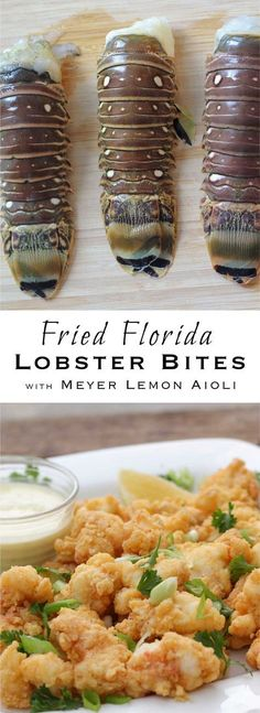 Fried Florida Lobster Bites with Meyer Lemon Aioli (Stuffed Baking Cod) Lobster Dishes, Lobster Recipes, Seafood Dishes, Fish And Seafood, Fish Recipes, Seafood Recipes, Cooking Recipes, Seafood Appetizers, Recipies