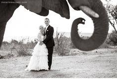 Askari lodge   Blaise & Sean   Melanie Wessels Photography