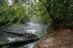The Big Thicket Natural Preserve showcases an ecological variety not found anywhere else in the Lone Star State, making it perfect for canoeing.