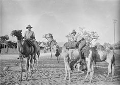 Men of an Australian and New Zealand Army Corps (ANZAC) battalion of the Imperial Camel Corps Brigade at Ludd, 1918.