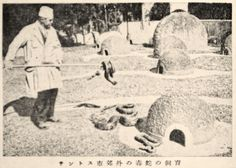 """Venomous Snakes in Captivity in Suburban Santos, Brazil"", Juvenile Encyclopedia, 1932 Vol. 14 World Geography 兒童百科大辭典 第十四巻 地理篇(三) 玉川學園出版部 昭和七年"