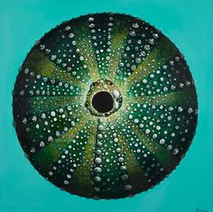 Paintings By Tracy Effinger Upton: Sea Urchins