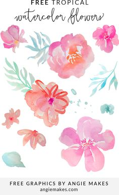 FREE Tropical Watercolor Flower Clip Art Collection. FREE Tropical Floral Clip Art Design Elements | angiemakes.com