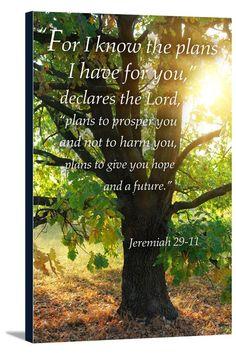 Canvas (Jeremiah 29:11 - Inspirational - Lantern Press Artwork)