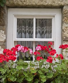 """""""Robin Hood Window"""" by Helen Fowler on Flickr - This is a photo of a lovely window in a North Yorkshire Village."""
