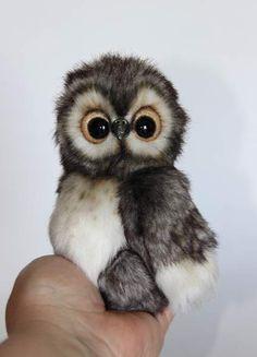 owl - baby By Averina Olesya - Bear Pile
