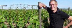 Im Weingut Altenkirch im #Rheingau vinifiziert Quereinsteiger Jasper Bruysten vor allem #Riesling, der durch lebendiges Säurespiel und animierende Mineralität zu überzeugen weiß. Aber auch hervorragende #Gewürztraminer oder #Spätburgunder könnt ihr auf http://www.vicampo.de/weingut-altenkirch bestellen - Versandkostenfrei ab 12 Flaschen.