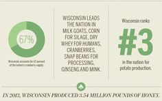 Wisconsin produces 67% of the nation's cranberry supply. Wisconsin produces the most dry whey for human, cranberries, snap beans, and milk goats in the state. Wisconsin is third in the state for potato production.