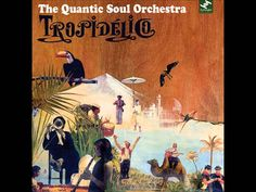 Quantic Soul Orchestra.  Tropidelico  Holiday Playlist...