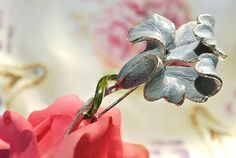 Blooming Iris - Kisvteam Treasury by Chic Mouse Vintage on Etsy