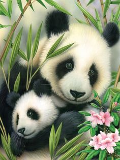 Painting by Numbers Junior Small Panda and Baby Set (Set of 3)