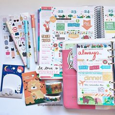 My pages this week using my Erin Condren Life Planner