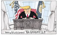 Opinion | The Donald Trump transition to the presidency, through the eyes of America's cartoons