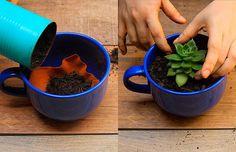 Aprenda a fazer um vaso de flor usando o que você já tem em casa: uma xícara ou uma caneca!