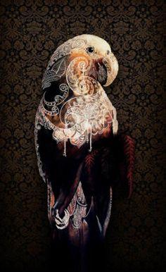Heart of the Kaka giclee fine art print by New Zealand artist Sofia Minson Artwork Prints, Fine Art Prints, Canvas Prints, Tui Bird, Maori Patterns, Victorian Wallpaper, Maori Designs, Fractal Patterns, Maori Art