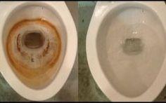A principal Dica Caseira Para Limpeza do Vaso Sanitário