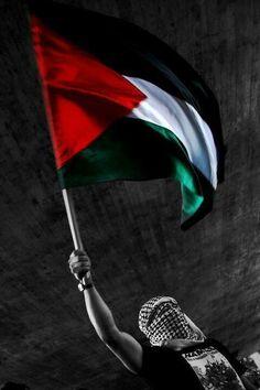Palestine♥♥