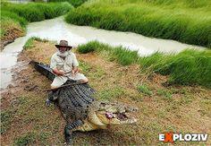 Zabudnite na lovcov krokodílov. Tieto plazy sa dajú využiť aj ako dopravný prostriedok.        Rob Brendl z austrálskeho Queenslandu sa zrejme veľmi nudí. Tento 65-ročný expert na plazy predviedolkúsok, z ktorého vás poriadne zamrazí. Nemal probl...