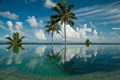 Taveuni Palms, Fiji