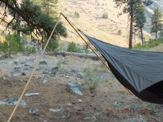 2pc canoe pole used for hammock support.