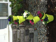 Key Lime flower pots