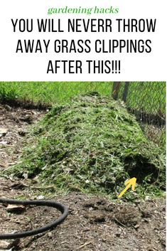 here are 9 reasons Why You'll never throw away grass clippings!  garden ideas, gardening ideas, gardening for beginners, gardening design, gardening tools,  gardening hacks, gardening and landscape, gardens and gardening ideas #gardening #gardenhacks #gardeningideas #grassclippings #grass