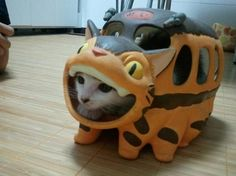 Kawaii cat hiding out in a Neko Bus (猫バス)
