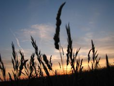 Fall Sunset by KLBImages on Etsy, $15.00