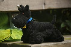 Scottish Terrier by Jessica Pilhede on Ravelry