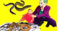 Người Nhện và Nữ Hoàng Băng Giá#Joker Trêu Đùa Công Chúa Nhí bằng Lươn K...