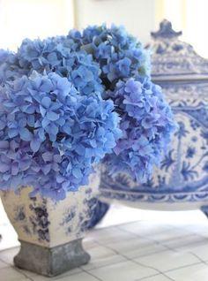 Love that blue & white!
