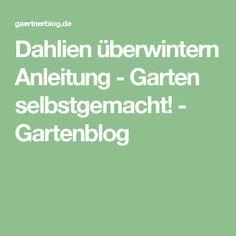 Dahlien überwintern Anleitung - Garten selbstgemacht! - Gartenblog