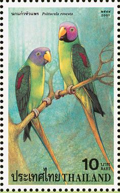 Blossom-headed Parakeet stamps - mainly images - gallery format