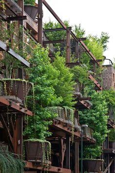 Los apartamentos ecológicos del edificio con arquitectura sostenible