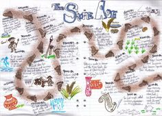 stone age timeline - Google-Suche