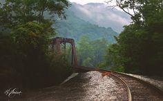 Lj Lambert Photography, near Prince, West Virginia.