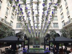 Four Seasons George V - Dicas: Hotéis em Paris | DRESS A PORTER – BLOG