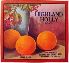 1920's  Highland, California HIGHLAND HOLLY Vintage Highland Citrus Crate Label